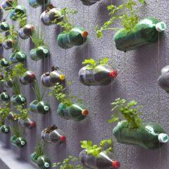 Duurzame trend: Urban Gardening