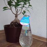 Ecover komt met 'drijfplastic' fles