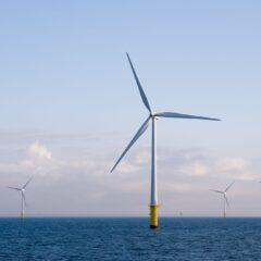 Windmolens in Noordzee niet duurder